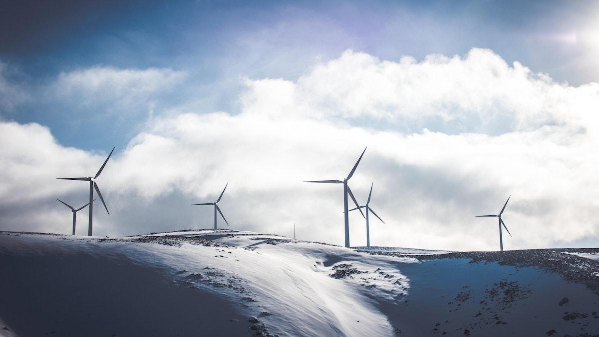 Power market winter 2021 2022 fuels wind